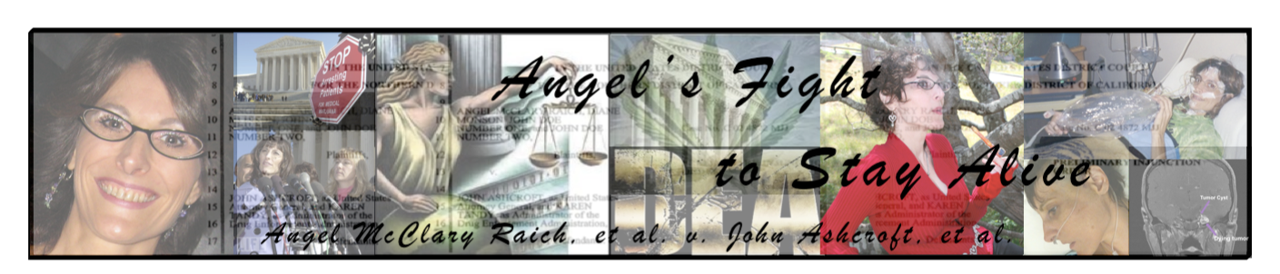 ... court of north district of california united states court of appeals